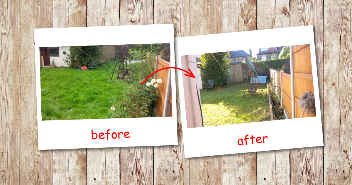 Garden clearance in Golders Green