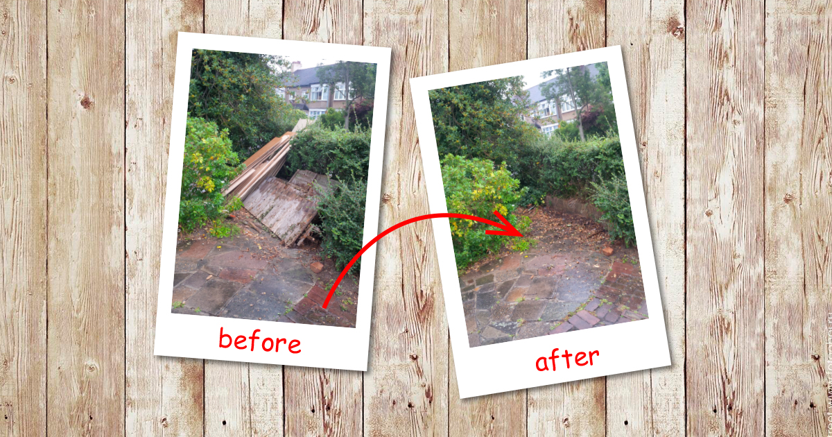 Wood clearance in Thames (Barking & Dagenham)