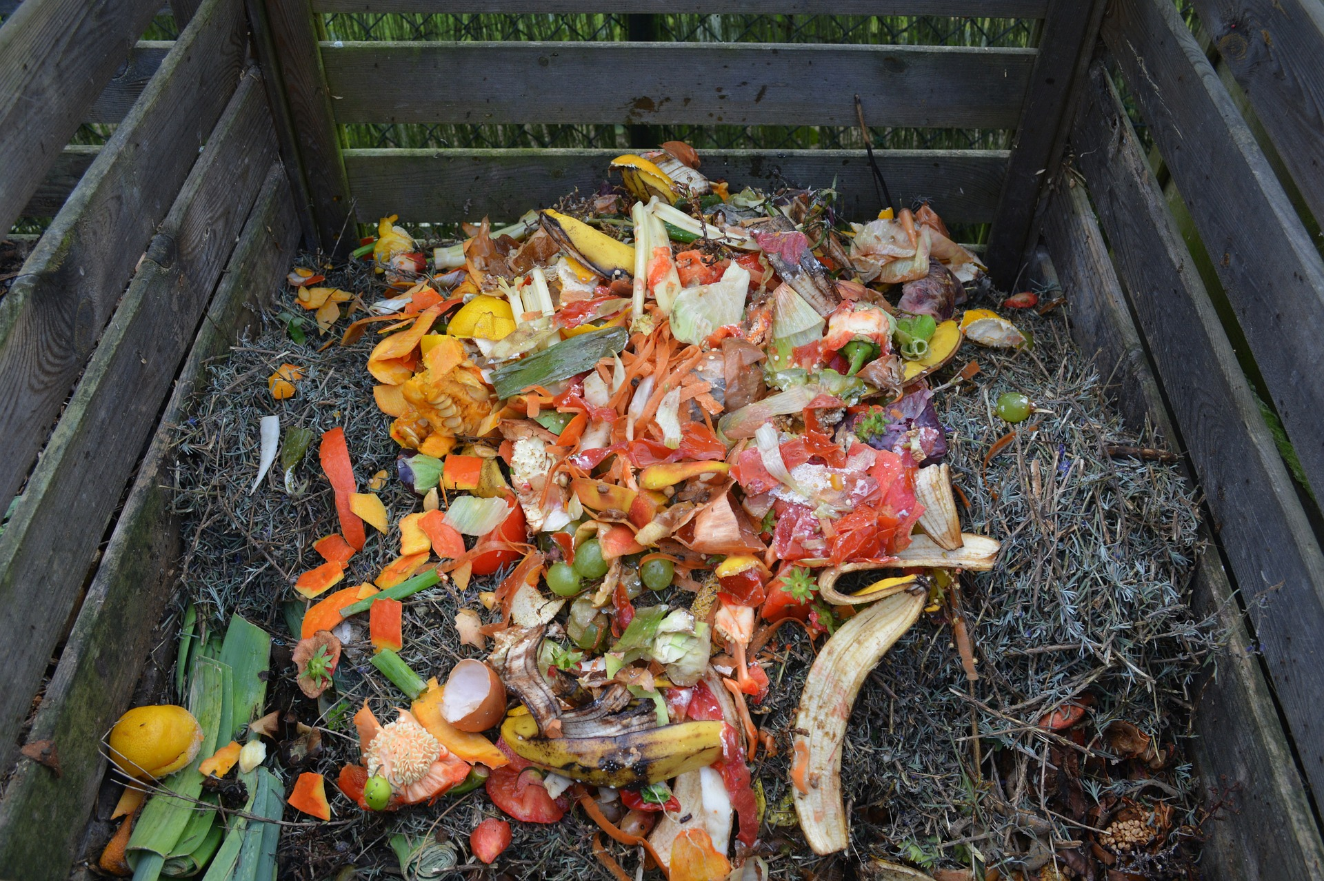 Composter food