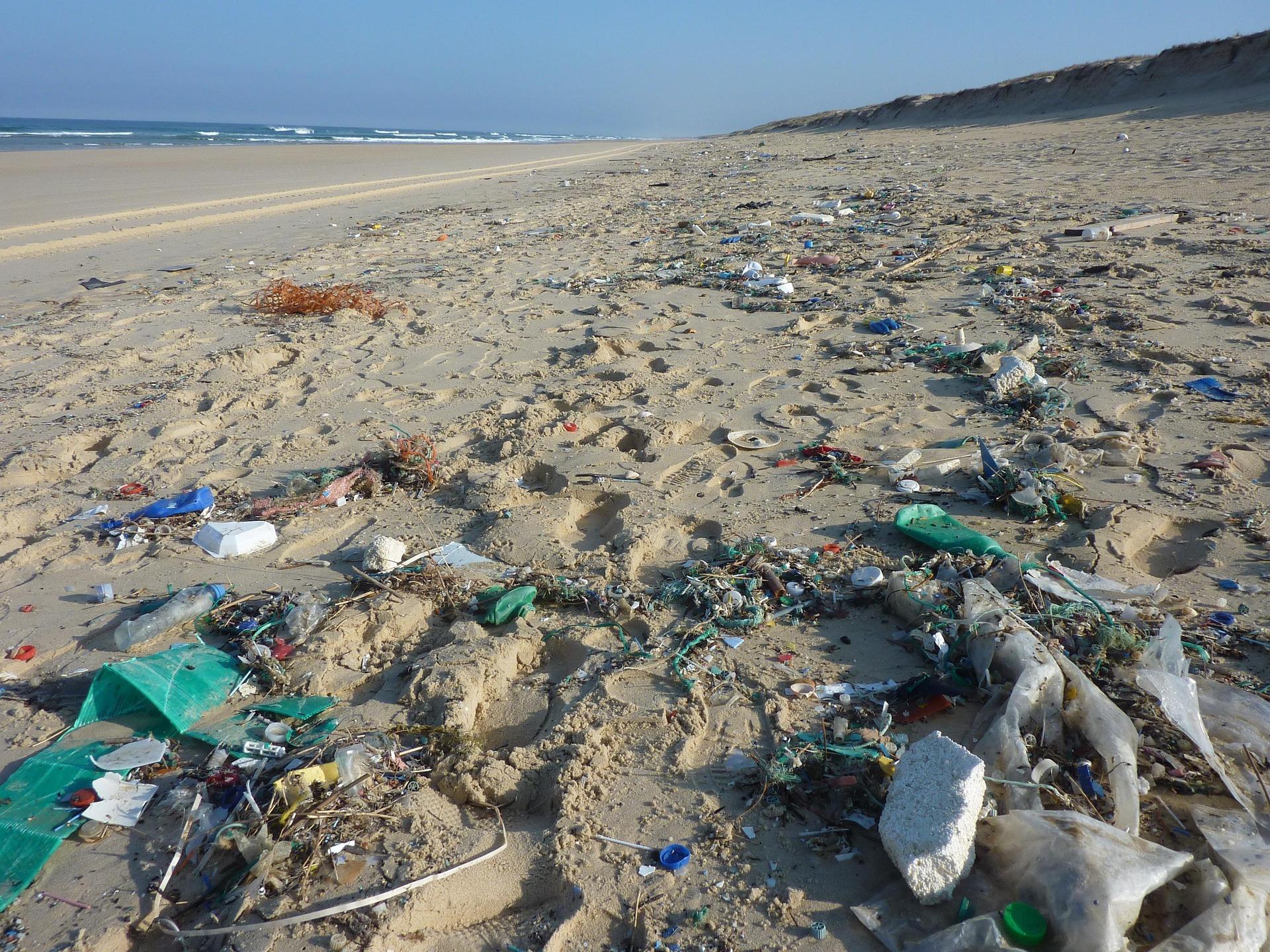 Waste & Sea